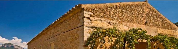Ein Weingut auf Mallorca – Winzer werden liegt im Trend
